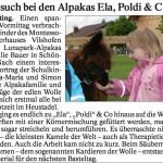 """Pressebericht im """"Vilshofener Anzeiger"""" über den Besuch des Montessori Kinderhauses Vilshofen"""
