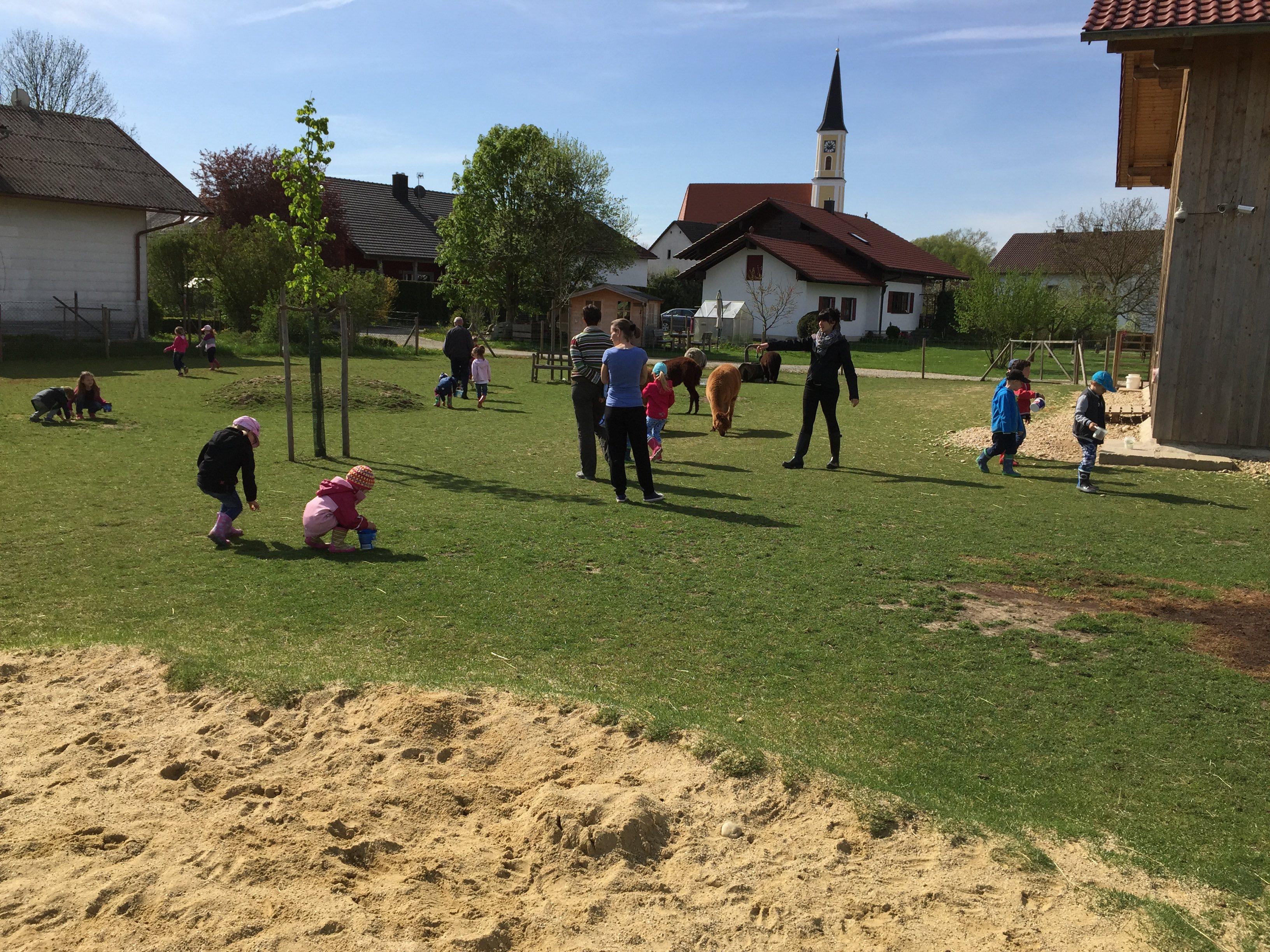 Kindergartenkinder bei der Schatzsuche auf der Alpakaweide.