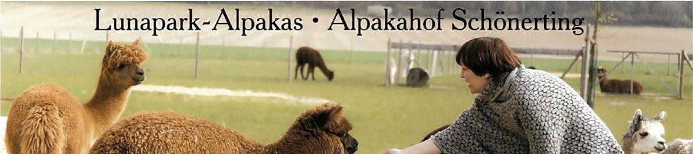Alpakahof Schönerting / Lunapark-Alpakas
